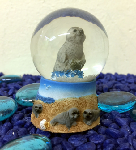 Sea Lion Glass Ocean Snow globe ~  B